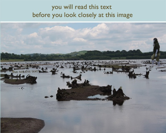 Text Image Text lead image